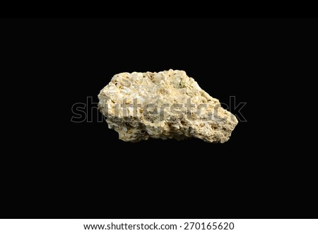 mineral  coquina (shell rock) - stock photo