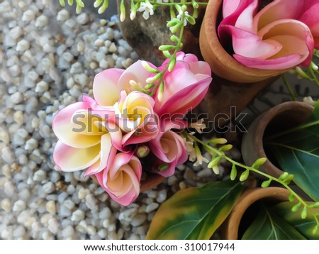 mini beautiful bouquet of fresh young pink flower plumeria lovely decorated in mini vessel on black background - stock photo