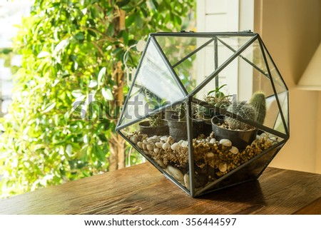 terrarium banque d images d images et d images vectorielles libres de droits shutterstock. Black Bedroom Furniture Sets. Home Design Ideas
