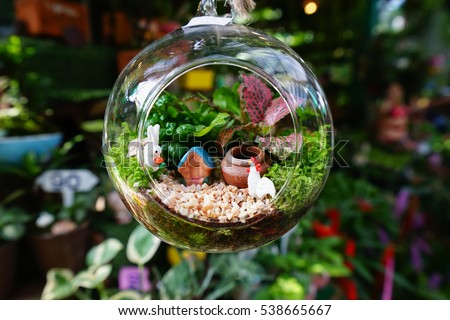 terrarium stock images royalty free images vectors shutterstock. Black Bedroom Furniture Sets. Home Design Ideas
