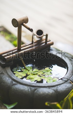 Mini garden water fall and pond with green plants.