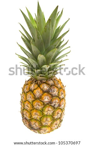 Mini pineapples on the white background.