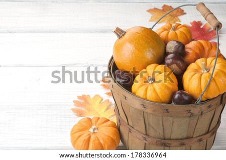 Mini Pumpkins and Chestnuts in a Harvest Basket with fall leaves on white board background with room or space for copy, text, your words.   - stock photo