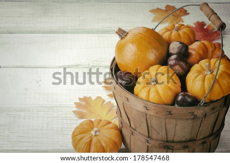 Mini Pumpkins and Chestnuts in a Harvest Basket with Fall Leaves on White Board Background with room or space for copy, text, words.  Vintage camera instagram. - stock photo