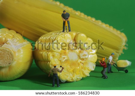 Miniature Construction Workers in Conceptual Food Imagery With Corn - stock photo