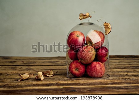 Miniature with Fruit Bugs inspecting Apples under glass dome - stock photo