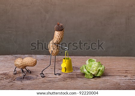 Miniature with Peanut Man doing garden work with his dog - stock photo