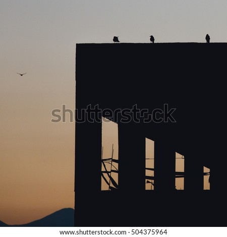 Minimalist architecture look at sunset