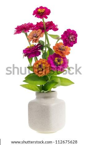 minimalistic  bouquet number 4 - mini  magenta orange  flowers  in ceramic pot vase isolated. Selective focus - stock photo