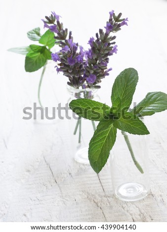 mint and lavender in the glass bottles - stock photo