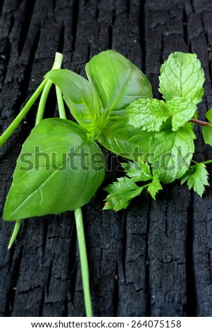 Mint, Basil and parsley leaves on wooden table - stock photo