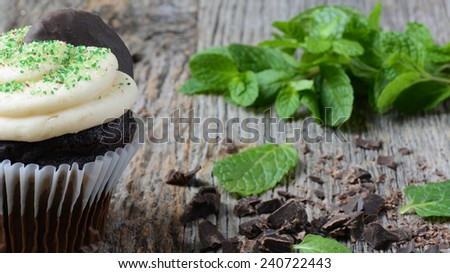 Mint Cupcake With Fresh Mint Leaves on Wooden Background