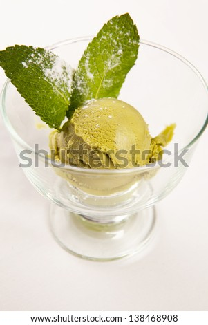Mint ice cream with chocolate sauce in a white bowl garnished with fresh mint. - stock photo