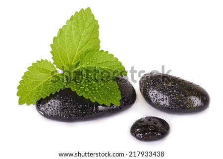Mint leaf and black stones isolated on white - stock photo