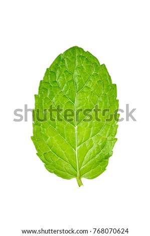 mint leaves and drug isolated on white background