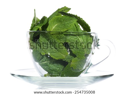 Mint leaves in glass cup isolated on white