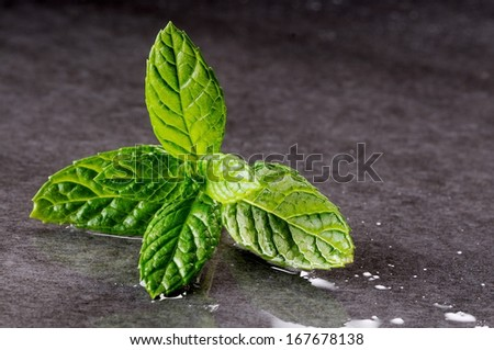 mint leaves on a slab of black stone - stock photo