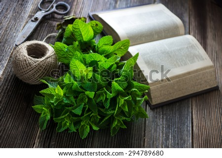 Mint on natural wooden background