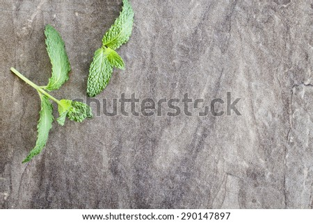 Mint sprigs on a rustic background with copy space.