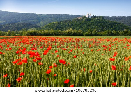 Miren Castle and poppy field in spring, Slovenia