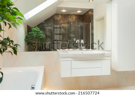 Mirror reflection of spacious modern bathroom in brown