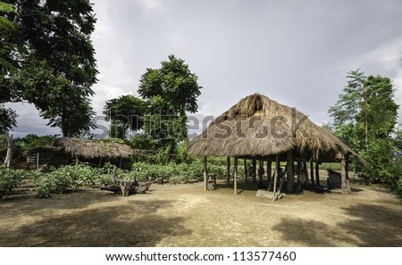 Mishing tribal hut near Bhalukpong, Assam, India. Triditional tribal home of the Mishing (also Mising) people of Assam and Arunachal Pradesh.