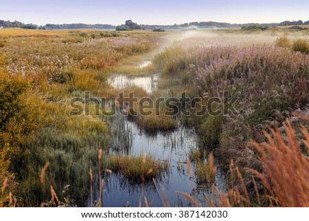 mist coming across the forest river - stock photo
