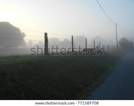 Mist: Morning mist over rural French fields enclosed with barbed wire fencing and posts