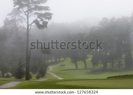 Mist over green San Francisco golf course - stock photo