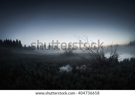 mist over the lake, dusk over the lake, a very dense fog, dawn  - stock photo