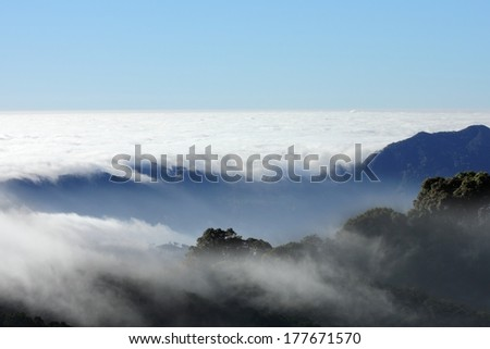 mist sea of fog clouds and the mountain - stock photo