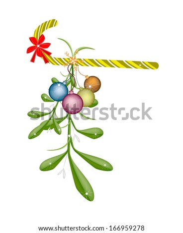Mistletoe Bunch and Christmas Balls with A Christmas Red Ribbon and Candy Cane For Christmas Celebration, Isolated on White Background  - stock photo