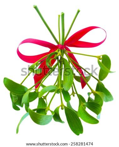 Hanging mistletoe clipart