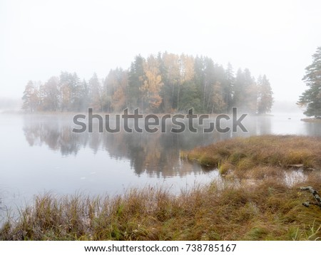 Misty autumn morning by lakeside