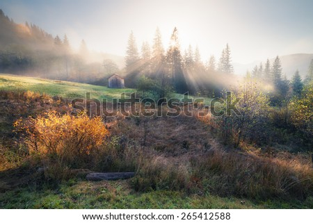 Misty autumn morning on the mountain hills - stock photo