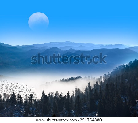 "Misty beech forest on the mountain ""Elements of this image furnished by NASA ""  - stock photo"