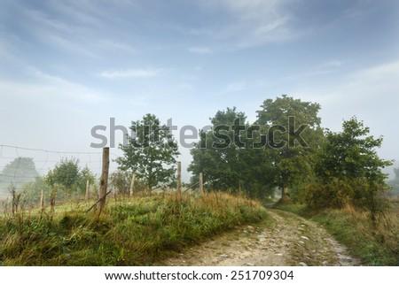 Misty countryside.North Poland Pomerania province/Misty landscape - stock photo