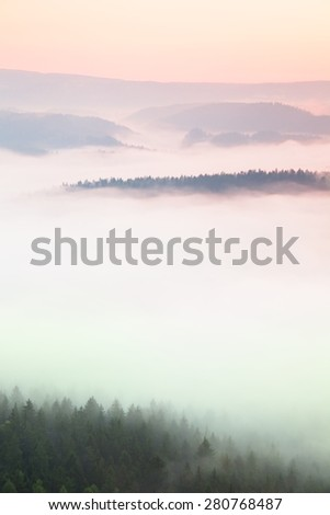 Misty daybreak in a beautiful hills. Peaks of hills are sticking out from foggy background, the fog is yellow and orange due to sun rays. The fog is swinging between trees.