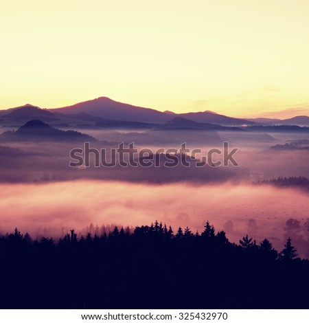 Misty daybreak in a beautiful hills. Peaks of hills are sticking out from foggy background, the fog is shinning . The fog is swinging between trees. - stock photo