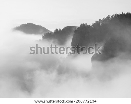 Misty dreamy landscape. Deep misty valley in autumn Saxony Switzerland park full of heavy clouds of dense fog. Sandstone peaks increased from foggy background.  Black and white picture.  - stock photo