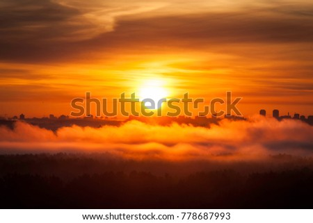 Misty forest fog and clouds on the sunrise morning in the autumn above the treas, view on sun beam, Minsk, Belarus