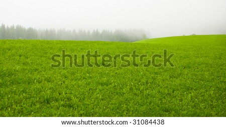 Misty green meadow in a countryside in the morning - stock photo