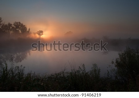Misty lake on a summer morning