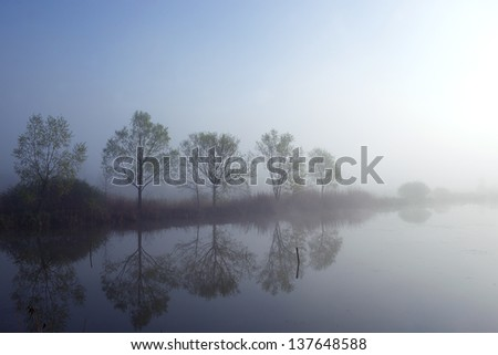 Misty morning by the lake - stock photo