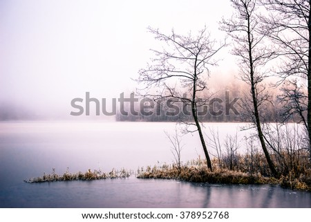 Misty morning on the lake - stock photo