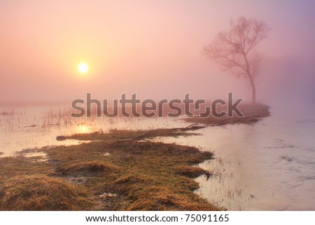 Misty morning on the river in early spring - stock photo