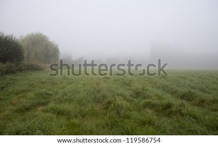 Misty morning, Oxford-shire, England - stock photo