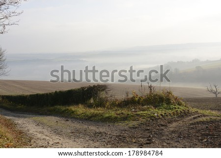 Misty South Downs countryside near Arundel in West Sussex. England. With Bird of prey in tree. - stock photo
