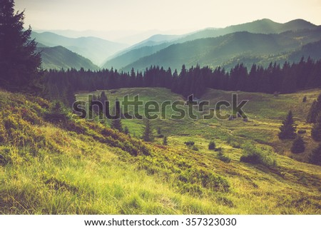 Misty summer mountain hills landscape. Filtered image:cross processed vintage effect.  - stock photo