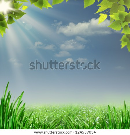 Misty summer noon. Abstract natural backgrounds for your design - stock photo